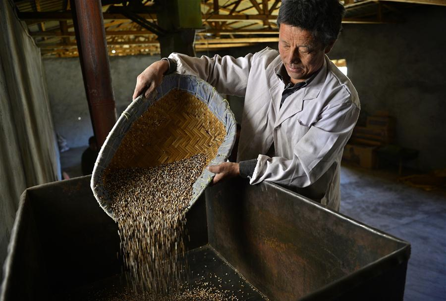 Characteristic industries help villages get rich in Lhoka, Tibet