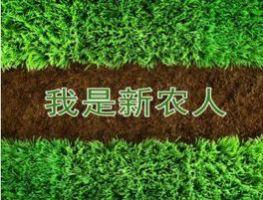 """培育""""归雁经济""""再造""""新三农"""""""