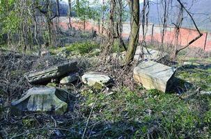 有石龟有石塔 青龙山树林里发现明代寺庙遗址