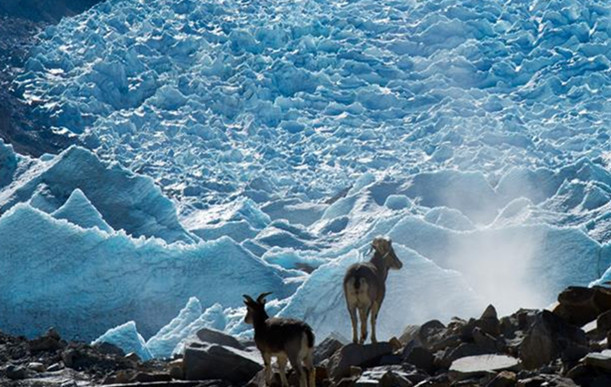 Gangbur-Gletscher in Tibet