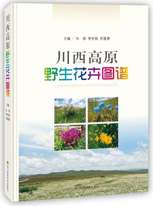 川西高原野生花卉图谱