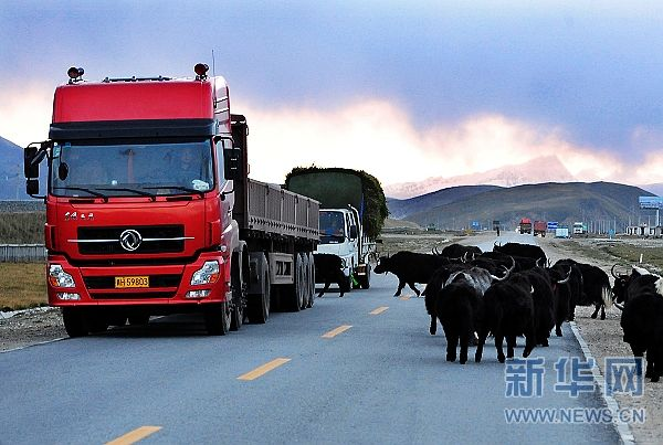 Tibetan farmer drives a better truck toward a better life
