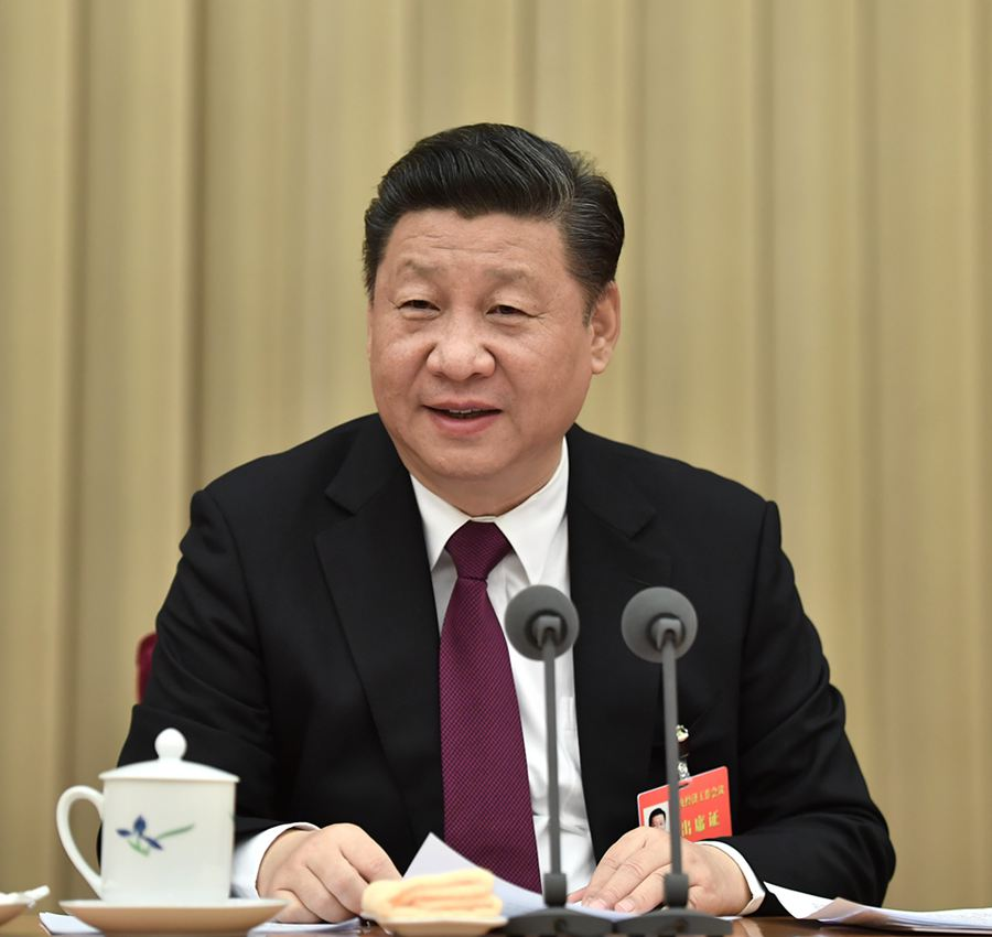 Xi stresses stability, progress in China's economic work