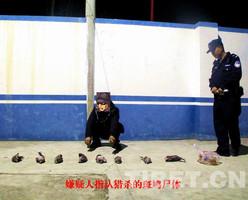 甘孜丹巴一男子网购气枪 上山猎杀9只斑鸠被拘