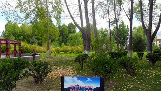 拉萨宗角禄康公园27种花陆续绽放