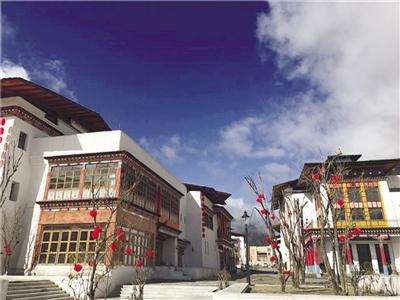 鲁朗国际旅游小镇昨日正式开业