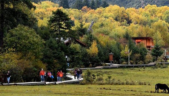 Yunnan:Pudacuo-Park in Shangri-La