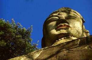 丛林生活仪规:宗教生活