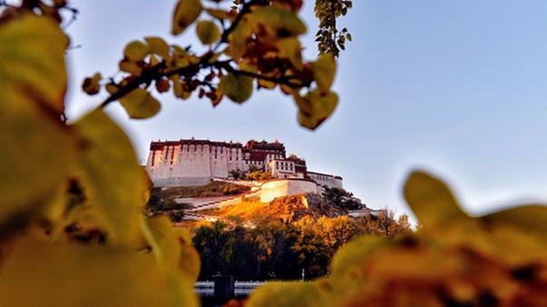 Gelehrte: Attraktion der tibetischen Kultur bleibt in China