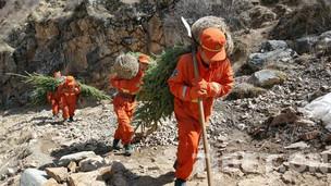 武警江达森林中队官兵参加驻地义务植树活动