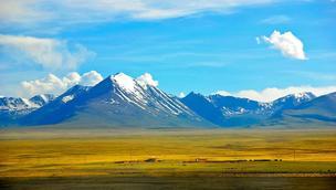 """研究表明:青藏高原2600万年前为""""暖湿低地"""""""