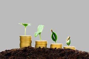 林芝市发放首笔金融扶贫贷款 解决扶贫项目融资难题