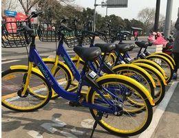 北京将设定共享单车发展上限数量 停车区将统一标准