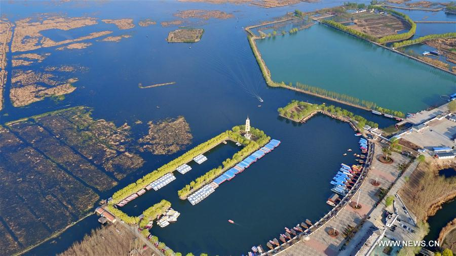 Commentary: Xiongan New Area to catalyze China's inclusive growth