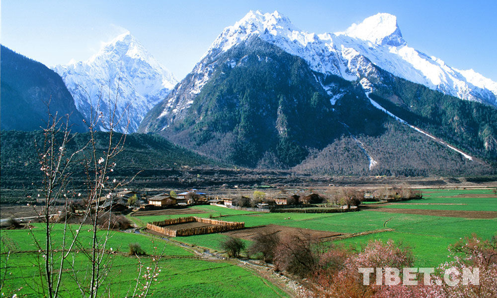 China's Tibetan delegation wraps up Switzerland visit