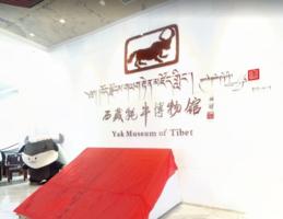 VR图片|牦牛博物馆系列活动开展