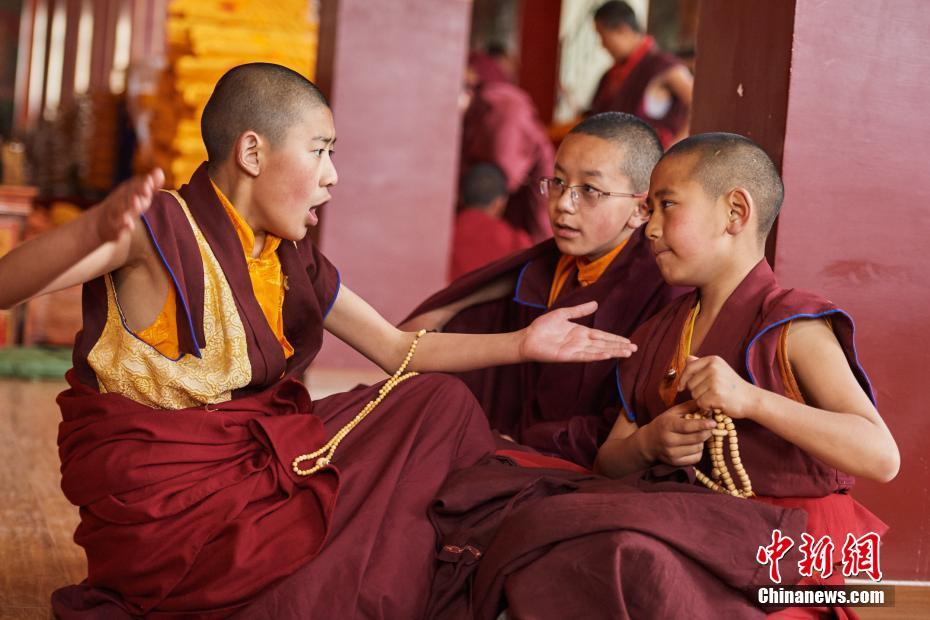 Feature: Life of young Living Buddhas