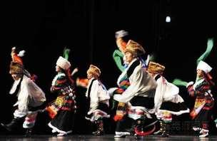 2017年西藏民间艺术团补助资金达3390万元