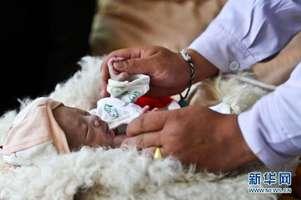 2.2 关于农牧区婴儿死亡率的讨论