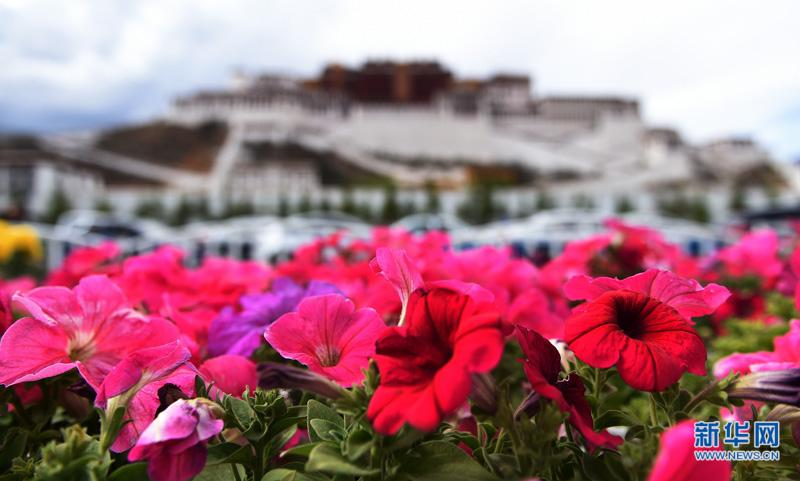 Tibet offers loans to encourage start-ups