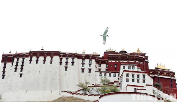 Der Park Dzongyab Lukhang