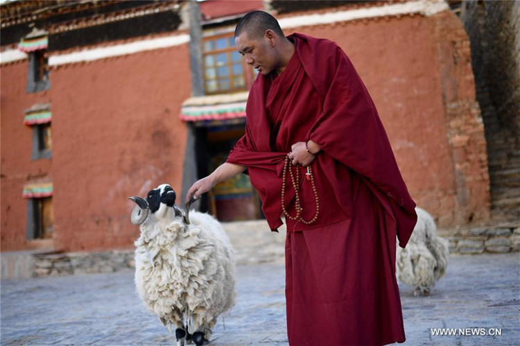 Alltag von Lama Ngawang Peljor im Rongpu-Kloster in Tibet
