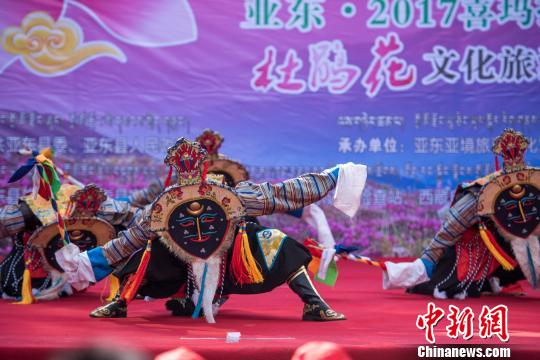 Tibetan border town holds first Rhododendron cultural tourism festival