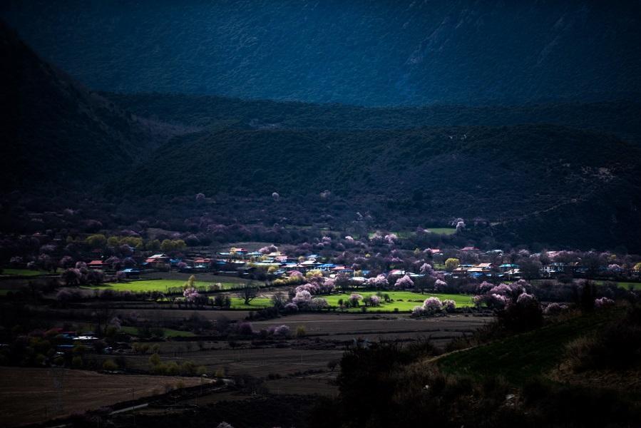 Guinness-Rekord: Das Pfirsichblüten-Tal von Boidoi
