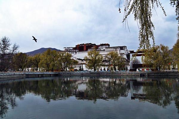 西藏自治区领导调研拉萨重点旅游景区