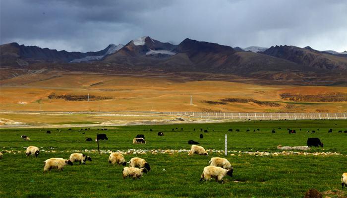 西藏自治区领导调研拉萨旅游景点基础设施建设