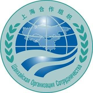 Interview: SCO can become essential part of global security system -- Kyrgyz official