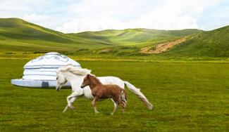 内蒙古自治区成立70年