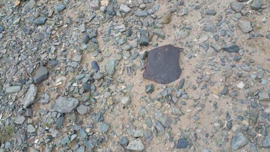 Erstmalig in Tibet Steinmeteoriten-Chondrit gefunden