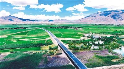 """西藏公路披""""绿装"""""""