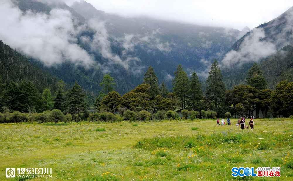 Wuxuhai: Natürliche Pflanzengenbank