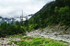 林芝:生态旅游圣地