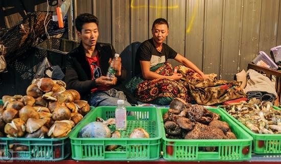 Blick auf den Matsutake-Markt auf dem Hochplateau