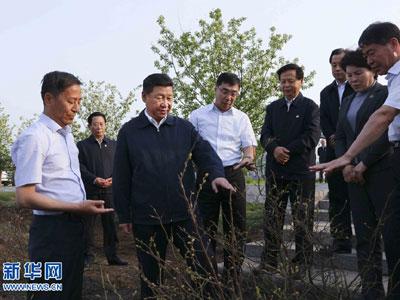 Große Erfolge beim Aufbau der ökologischen Zivilisation seit dem 18. Parteitag