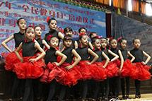"""西藏2017年""""全民健身日""""启动仪式在拉萨举行"""