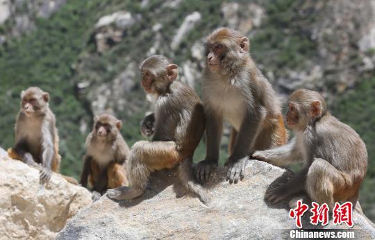 Neuheiten des Tourismus in Osttibet