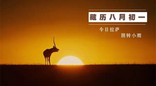 """黄河源再现""""千湖奇观""""   藏闻早餐9.21"""