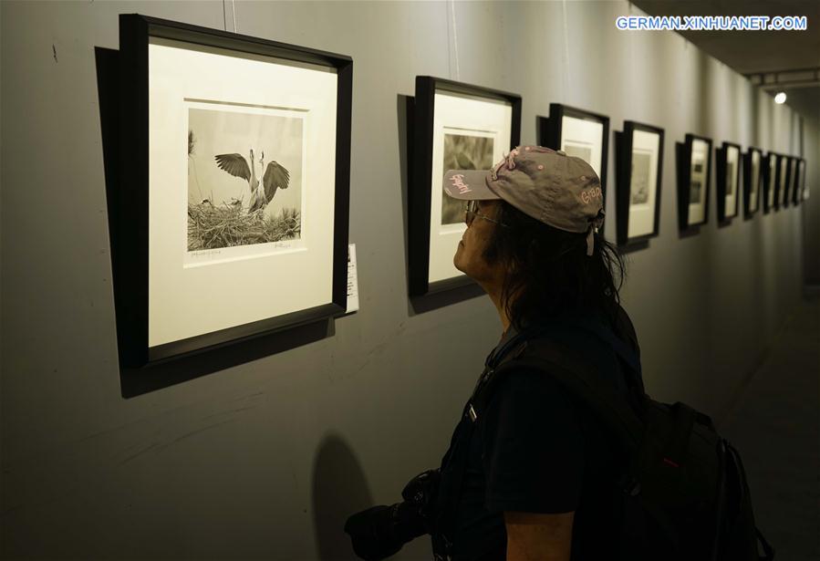 17. Pingyao Internationales Fotografie-Festival eröffnet