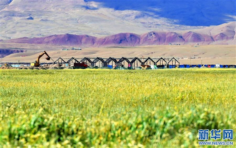 Tibet: Viehwirtschaft zur Armutsbekämpfung