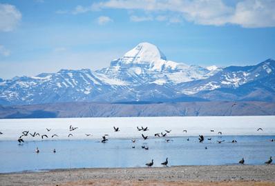 Shanghai to send 1.1 mln tourists to Tibet
