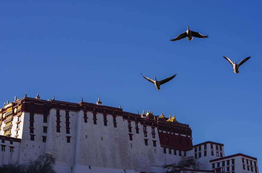 Wintry scenes in Lhasa, Tibet
