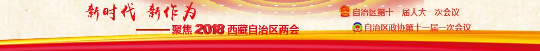 """2018西藏""""两会"""""""