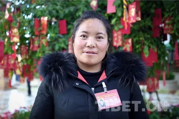 Neue Gesichter auf den Tagungen des Volkskongresses und der PCCKV von Tibet 2018