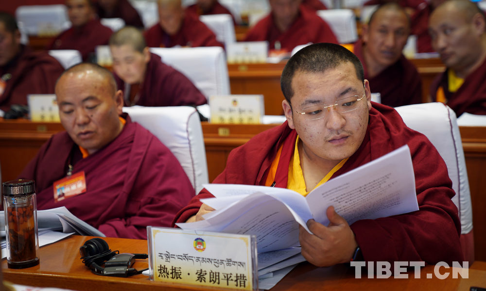 Religious section has the most representatives at Tibet CPPCC annual session