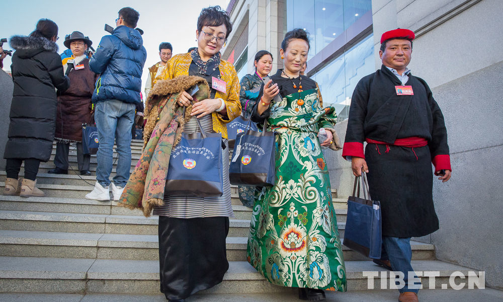 Tibet CPPCC members to the annual session