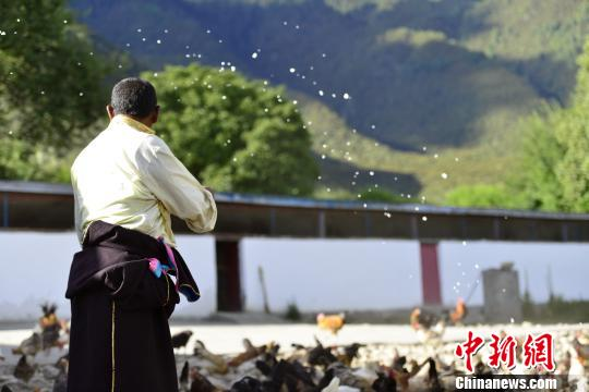 Tibet lifts 530 thousand people out of poverty in past five years
